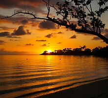 Jamaican Sunset by Pippa Carvell