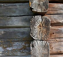 Old Log Wall by KalleCat