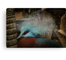 Victoria Crowned Pigeon in tribal decor Canvas Print