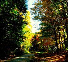 Autumnal rest by MarianBendeth