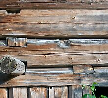Old Log Wall 2 by KalleCat