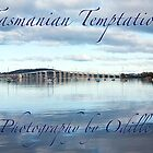 Tasmanian Temptations by Odille Esmonde-Morgan