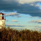 West Quaco Lighthouse by Kathleen Daley