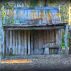 The Shed at Nurragingy by Vicki Childs