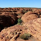 The Lost City, Kings Canyon, Australia by Nick Delany
