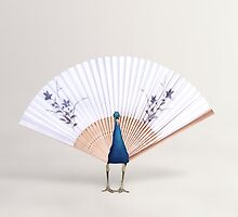 Peacock Fan by KittyBitty1