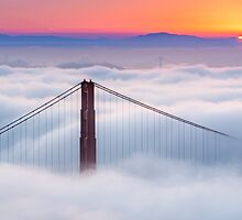 Foggy Morning by Raj Golawar