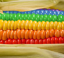 Rainbow Corn by KittyBitty1