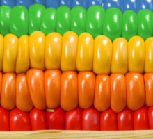 Rainbow Corn Sticker