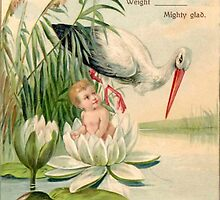 Vintage Birth Announcement--Stork, Lily Pad, Child by Tastefullytacky