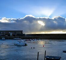 Harbour Light At Lyme This Morning by lynn carter