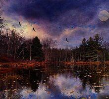 Moon Over the Marsh by PineSinger