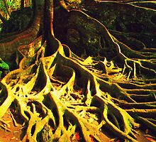 bali roots by sunRaycreations