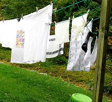 Clothesline Photograph Series 10 by WhimsyvilleUSA
