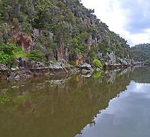 Cataract Gorge, Launceston, Tasmania, Australia by Margaret  Hyde