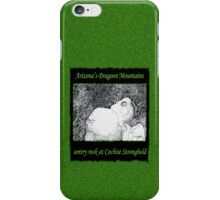 Sentry Rock or Indigenous Multi-tasking iPhone Case/Skin
