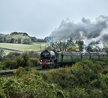 Tornado steaming through the countryside by Judi Lion
