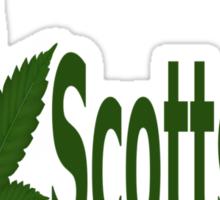 0174 I Love Scottsdale Sticker