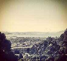 SF Bay by omhafez
