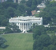 White House by ideutsch