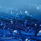 Bright Blue Shimmers by edesigns14