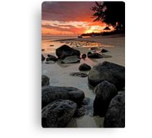 Rocky shoreline in Mauritius Canvas Print