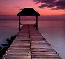 Jetty at Sunset by Davidpstephens