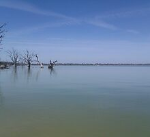 Lake Bonney, SA by Cocopop19