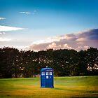 The TARDIS & sunset by Tiia Öhman