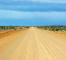 A dirt road through wide open space by imaginethis