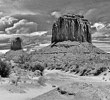 The American West by Lanis Rossi