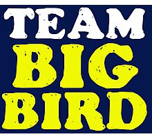 Team Big Bird Photographic Print