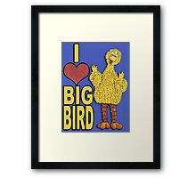 I Love Big Bird Framed Print