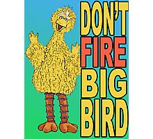 Don't Fire Big Bird Photographic Print
