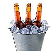 Beer bottles in a bucket of ice isolated on white background by paulrommer