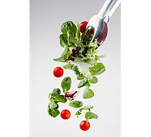 Fresh salad falling from a clamp Photographic Print