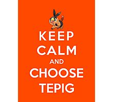 Keep Calm And Choose Tepig Photographic Print