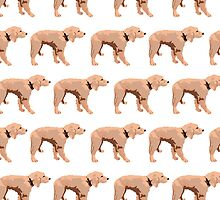 Peach Golden Retriever White Pattern by pupsofnyc