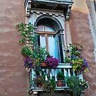 Venice Window by barkeypf