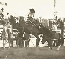 "Jerry Ambler on ""Old Bill"" Calgary Stampede by Robert Stanford"