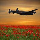 Across The Fields by Dave Godden