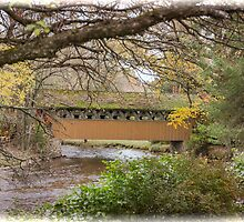 Red Mill Covered Bridge by Thomas Young