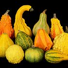 Autum harvest gourds by Jim  Hughes