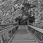 Stairs - Black And White Photography by FinlayMcNevin