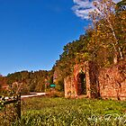 Ruins of Hwy 123 by Lisa G. Putman
