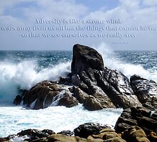Adversity is as a strong wind... by Julia Harwood