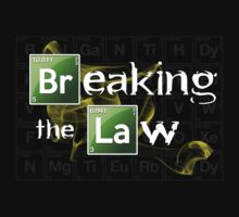 Breaking The Law by viperbarratt