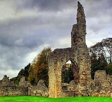 Thetford Priory  by larry flewers