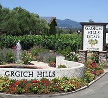 Grgich Hills Estate Napa Valley Winery by grylemay