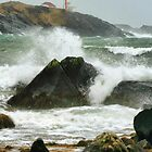 Stormy November Day at Cape Forchu by Debbie  Roberts